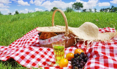 2017 Is Going To Be a Picnic!